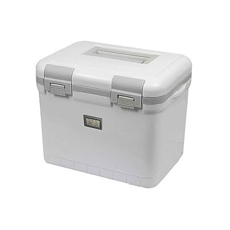 LIYANBWX - Nevera pasiva para Coche, refrigerador y Calentador de ...