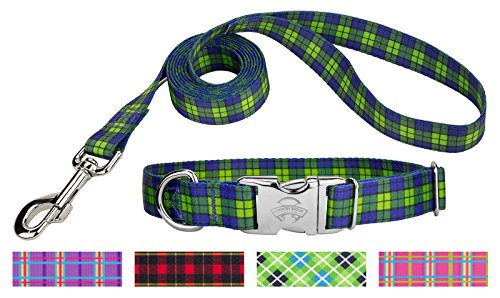 Country Brook Design | Blue and Green Plaid Premium Dog Collar & Leash - - Match Lead Leash
