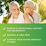 Nerve Support Formula for The Nutritional Support