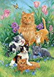 Toland Home Garden  Meadow Cats 28 x 40-Inch Decorative USA-Produced House Flag
