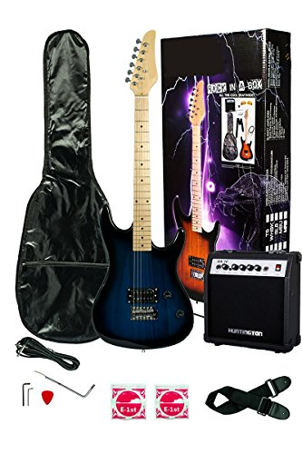 "Full size 39 Inch BLUE Electric Guitar,""Learn to Play Guitar DVD"", Amplifier & Carrying Case & Accessories, Whammy Bar, Strap, Cable, Strings, + Blue Medium Guitar Pick [PRO-EG Series]"