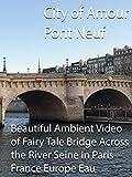 City of Amour Pont Neuf Beautiful Ambient Video of Fairy Tale Bridge Across the River Seine in Paris France Eau