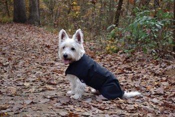 Horseware Made In America Waterproof Dog Blanket Size XXLarge color Black by Horseware