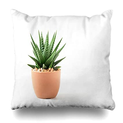 Amazon.com: LALILO Throw Pillow Covers, Small Plant in Pot ... on home made books, home made hoods, home made brushes, home made cleaning, home made trailers, home made nuts, home made sails, home made home, home made umbrellas, home made fans, home made locks, home made pillows, home made belts, home made security, home made screws, home made shirts, home made sports, home made windows, home made country, home made tents,