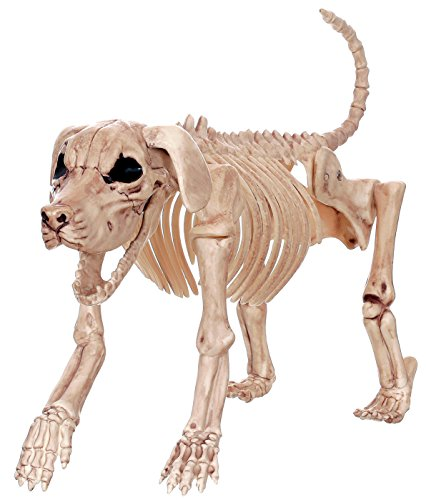 Crazy Bonez Skeleton Dog - Beagle Bonez