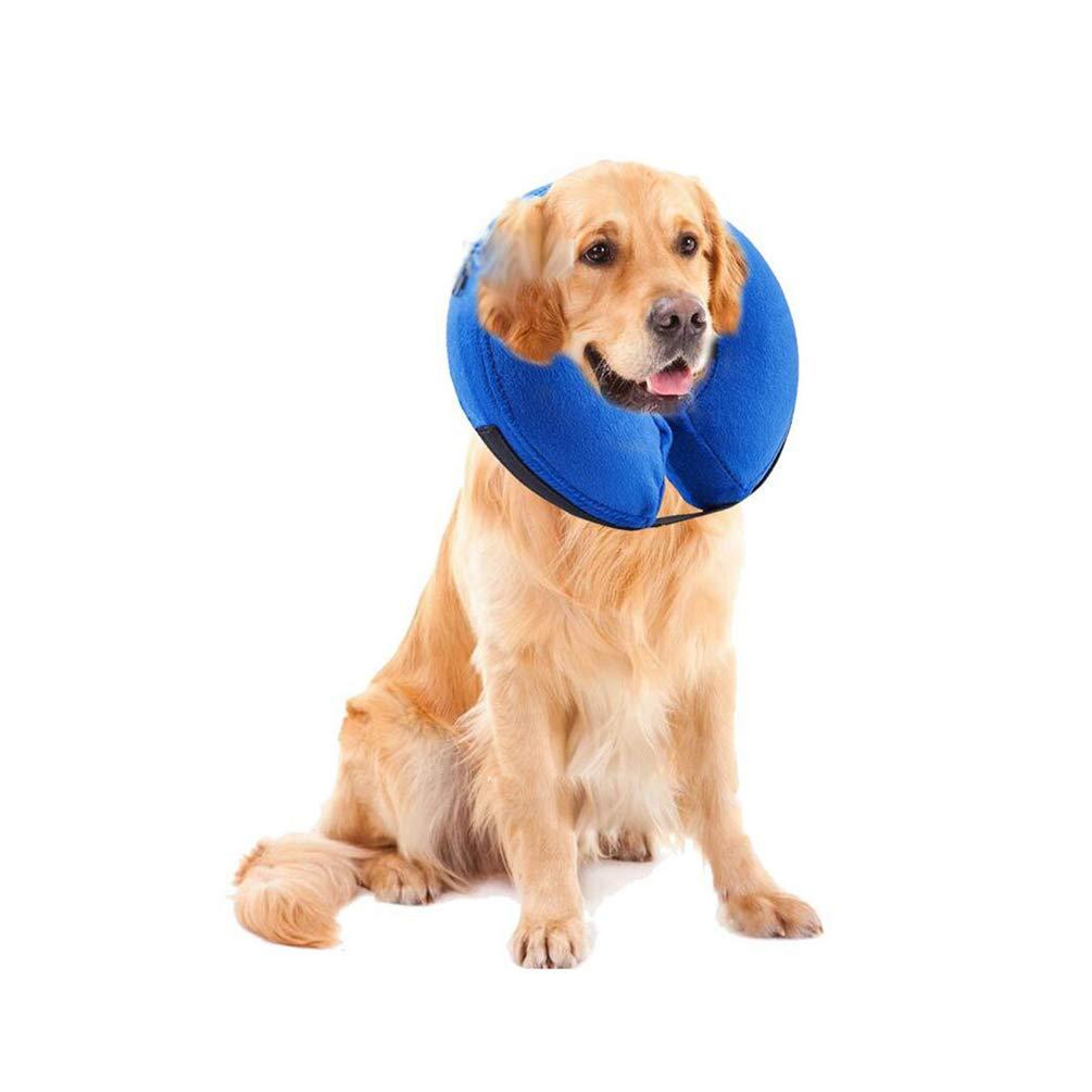 Xinwcang Collar Isabelino Inflable para Perros Collar de ...
