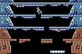 Ice Climber - Classic NES Series