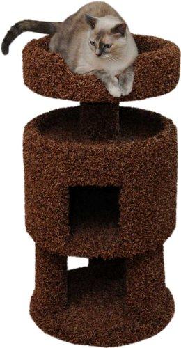 Contemporary Cat House Color: Beige, My Pet Supplies