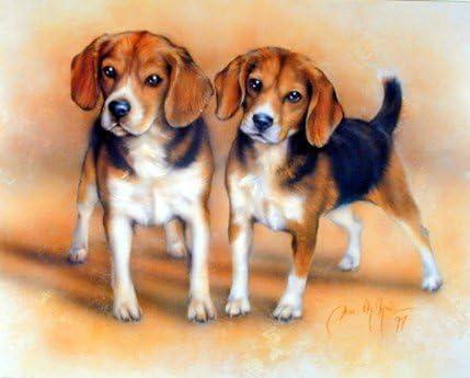 English Print Beagle Dog  Art Picture