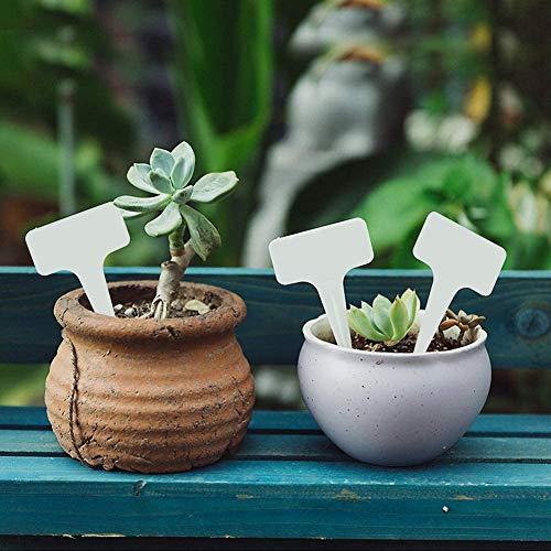 HAKACC Mini Pflanzenstecker, 200 STK. Stecketiketten Wetterfest Pflanzenschilder mit 1 STK. Schwarze Textmarker Kräuter Schilder zum Beschriften