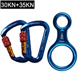 AYAMAYA 30KN Screwgate Locking Climbing Carabiners 2 Pack & Figure 8 Descender,Outdoor D-Ring Hook Rappel Device for Rappelling Belaying Rock Climbing,Blue