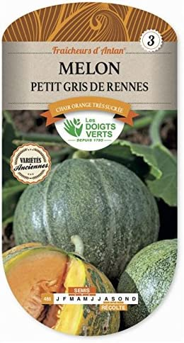 Sachet de graines Melon Petit Gris de Rennes Vilmorin