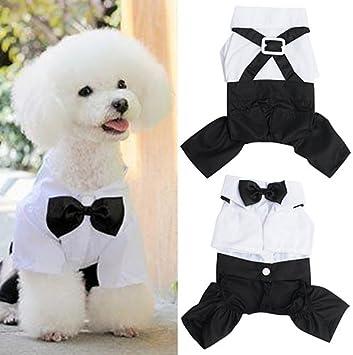 yongqxxkj Ropa para Perros y Gatos, Vestido de Princesa Smoking ...