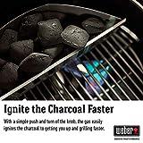 Weber 18301001 Summit Charcoal Grill, Black