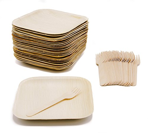 Ecodesign Disposable 50-Piece Palm Leaf Dinnerware - Appetizer Sides Dessert 7