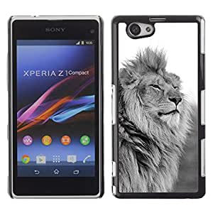 Design for Girls Plastic Cover Case FOR Xperia Z1 Compact D5503 King Lion Black White Mane Powerful OBBA
