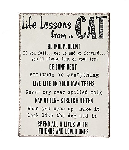 Life Lessons From A Cat 15 x 20 Inch Iron Hanging Wall Plaque