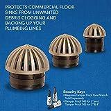 Guardian Drain Lock Dome-D-Lock Commercial Floor