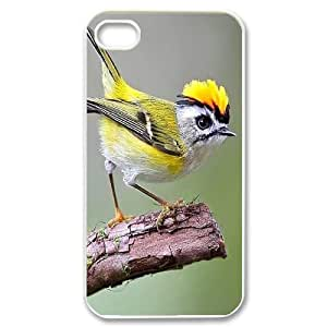 D-PAFD Customized Print Hummingbird Pattern Back Case for iPhone 4/4S