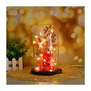 Autoday USB Beauty and The Beast Preserved Fresh Rose Flower LED Light Fallen Petals in a Glass Romantic Wooden Base for Her Birthday Anniversary 3