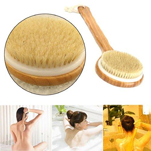 Metal Body Receiver (Naladoo Long Handle Wooden Bath Shower Body Back Brush Spa scrubber EXFOLIATING)