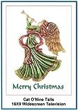 Cat O'Nine 16x9 Widescreen TV: Greeting Card: Merry Christmas