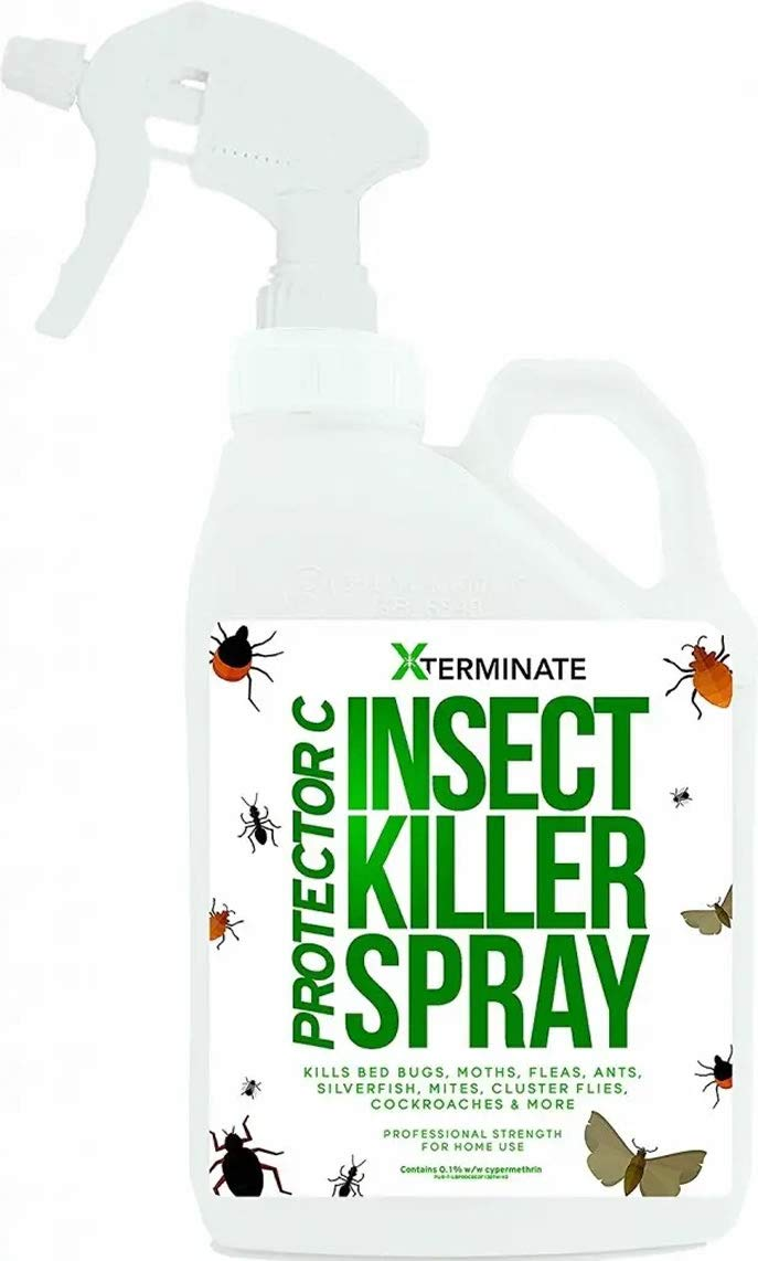 Protector C Bed Bug Flea And All Insect Buy Online In Saudi Arabia At Desertcart