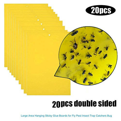 (Goodlock 20Pcs Strong Flies Traps Bugs Sticky Board Catching Aphid Insects Pest Killer)
