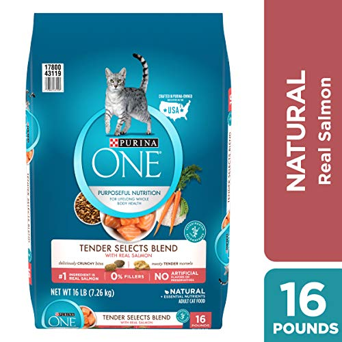 Purina ONE Natural Dry Cat Food, Tender Selects Blend With Real Salmon – 16 lb. Bag