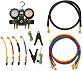 hilmor 1839131 22-404A-410A 4-Valve Manifold with Hoses and Dual Readout Thermometer