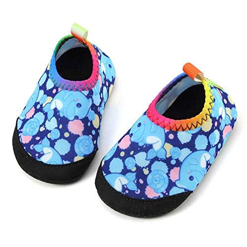 Panda Software Baby Boys Girls Water Shoes Infant Barefoot Quick -Dry Anti- Slip Aqua Sock for Beach Swim Pool Blue-Dolphin/0-6 Months M US Infant