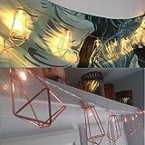 accmor 2 x 20 LEDs Fairy Lights, Battery Powered