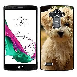 EJOY---Cubierta de la caja de protección para la piel dura ** LG G4 ** --Norfolk Terrier Puppy Dog Summer