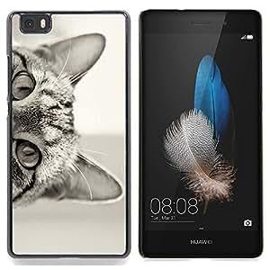 """For Huawei Ascend P8 Lite (Not for Normal P8) Case , Gato curioso Gatito lindo de Pelo Corto Negro"""" - Diseño Patrón Teléfono Caso Cubierta Case Bumper Duro Protección Case Cover Funda"""