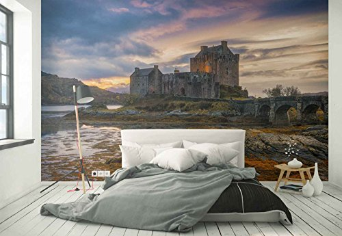 Photo wallpaper wall mural - Castle Fort Ruins Stonewall Bridge Swamp - Theme Travel & Maps - L - 8ft 4in x 6ft (WxH) - 2 Pieces - Printed on 130gsm Non-Woven Paper - 1X-1226149V4 by Fotowalls Photo Wallpaper Murals