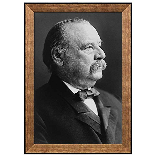 Portrait of Grover Cleveland (24th President of the United States) American Presidents Series Framed Art Print