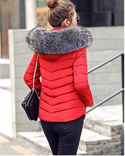 Jacket Red Down 34 Woman Jacket Short Hooded Sandra Woman Fur qtaSwEg