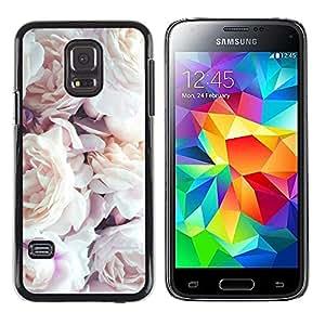 TopCaseStore / la caja del caucho duro de la cubierta de protección de la piel - Pink White Roses Spring Nature - Samsung Galaxy S5 Mini, SM-G800, NOT S5 REGULAR!