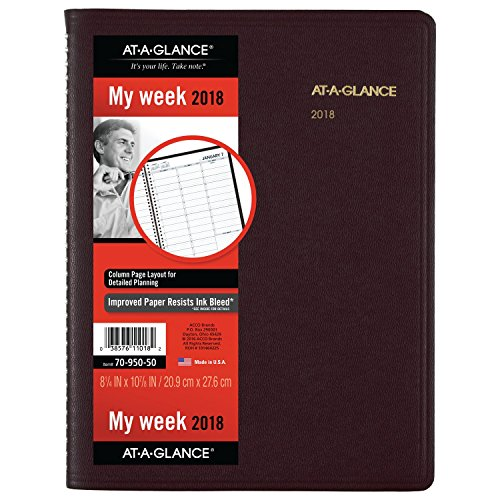 - AT-A-GLANCE Weekly Appointment Book / Planner, January 2018 - January 2019, 8-1/4