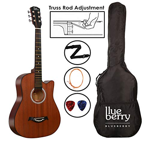 Blueberry 38 Inch Acoustic Guitar Kit Inbuilt Truss Rod, with Bag,Belt, One Pack Strings And Picks (Brown)