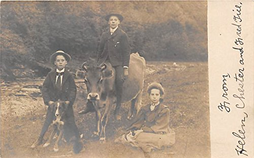 Children with animals Real Photo Mountaindale, New York, Postcard