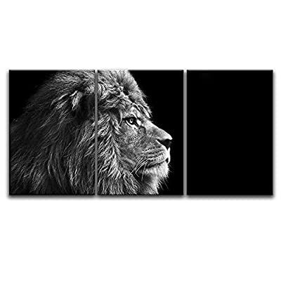 3 Panel Lion Head on Black Background x 3 Panels 16