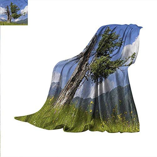 Nature Super Soft Lightweight Blanket Old Spruce Tree in Meadow Oversized Travel Throw Cover Blanket 50