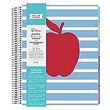 Erin Condren Teacher Lesson Planner- Striped Apple July 2018-June 2019 (12 Month)