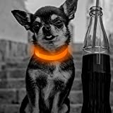 Clan_X Led Dog Collar, USB Rechargeable light up Dog Collar, Flashing Collar with Reflective Stitches Make Your Pets Visible & Safe, Adjustable Size for Small Dogs & Cats(Orange)
