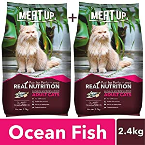 Meat Up Adult Cat Food, Ocean Fish – 1.2 kg Pack (Buy 1 GET 1 Free)