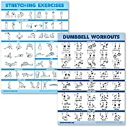 2 Pack Dumbbell Workouts and Stretching Exercise Poster Set - Laminated 2 Chart Set - Dumbbell Exercise Routin