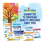 Boiron Arnica Montana 6C 80 Pellets Homeopathic