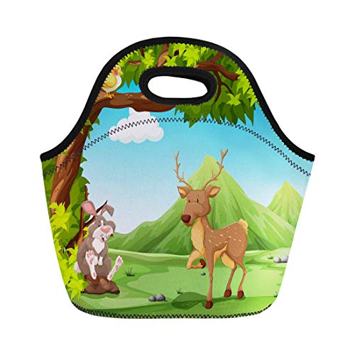 - Semtomn Lunch Bags Clipart Talking Scenery of Animals Sitting Under Big Tree Neoprene Lunch Bag Lunchbox Tote Bag Portable Picnic Bag Cooler Bag