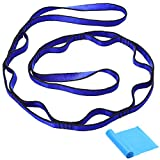 Uleecy Stretch Strap Sets - Daisy Chain with 10 Independent Loops – Best option for Physical Therapy and Exercise Training – Free Yoga Flat Exercise Resistance Band Included